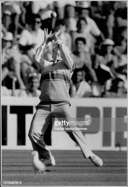 One Day Cricket Aust vs Windies NSW Captain Dirk Wellham catches Roge Harper bowled Davis for 20 runs February 6 1987