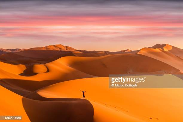one ecstatic person on top of a sand dune in the desert - ナミブ砂漠 ストックフォトと画像