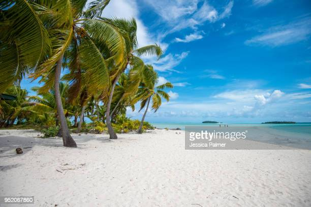 one foot island in aitutaki, cook islands (2) - pacific islands stock pictures, royalty-free photos & images