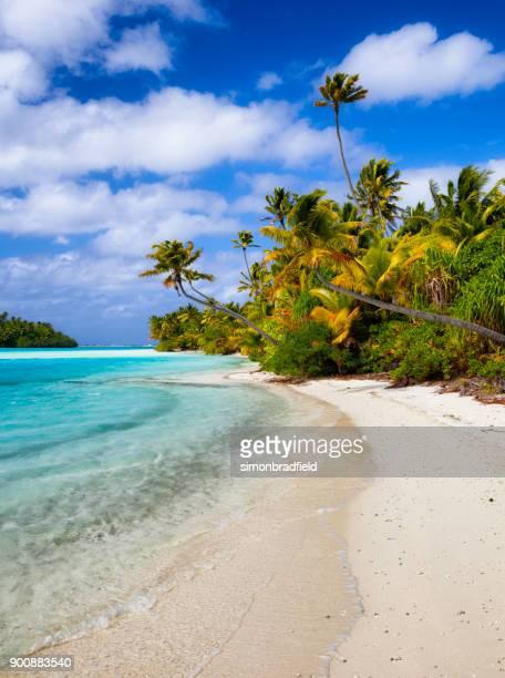 one foot island in the cook island's aitutaki lagoon - isole cook foto e immagini stock