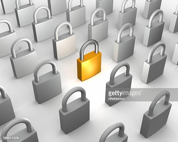 One gold padlock among many grey
