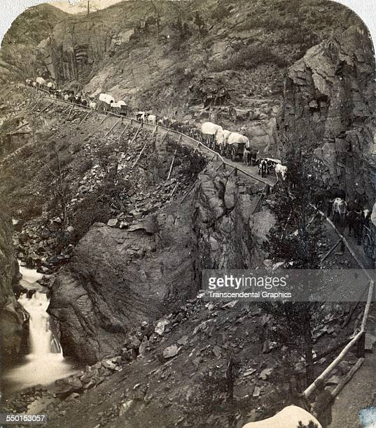One half of a stereo view by Charles Weitfle shows a wagon train heading up Ute Pass to the gold fields Colorado Springs Colorado circa 1875