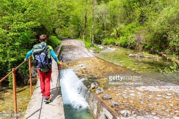 one hiker crosses bridge over the river. - italia ストックフォトと画像