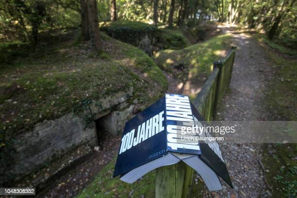 One hundred years ago on World War I ended Verdun the name of this city stands for the horror and the millionfold death of soldiers and civilians The...