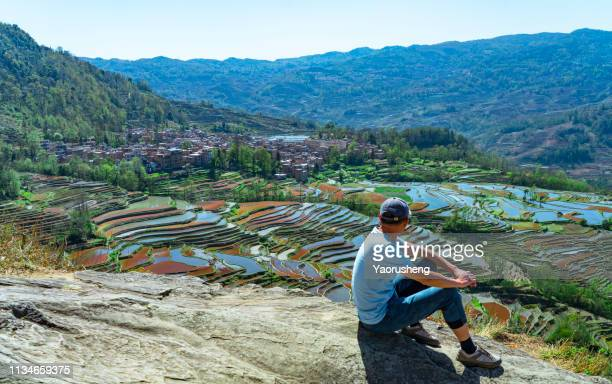 one male tourist visiting the yuanyang rice terrace,yuannan,china - rice terrace stockfoto's en -beelden