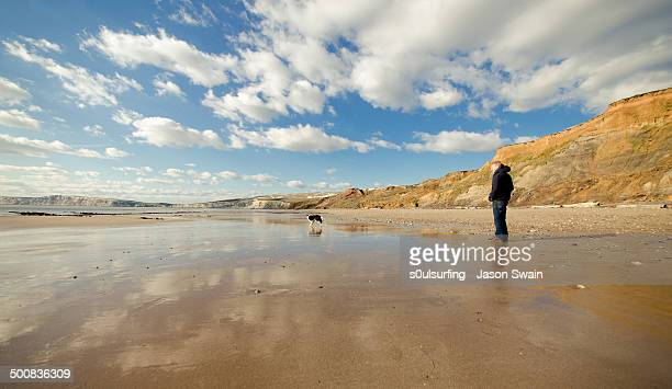 one man and his dog - compton bay isle of wight stock pictures, royalty-free photos & images
