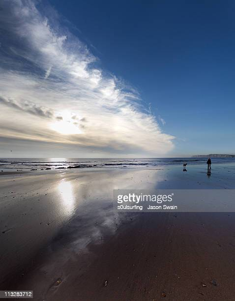 one man and his dog  with clouds reflection - s0ulsurfing foto e immagini stock