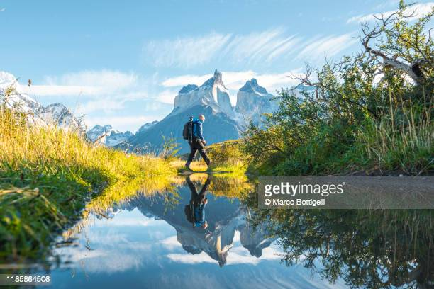 one man crossing a pond in torres del paine national park, chile - travel stock pictures, royalty-free photos & images