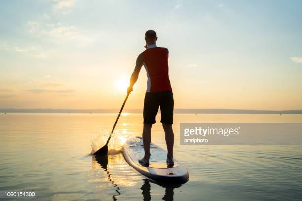 one man padleboarding alone on lake at sunset - paddleboard stock pictures, royalty-free photos & images