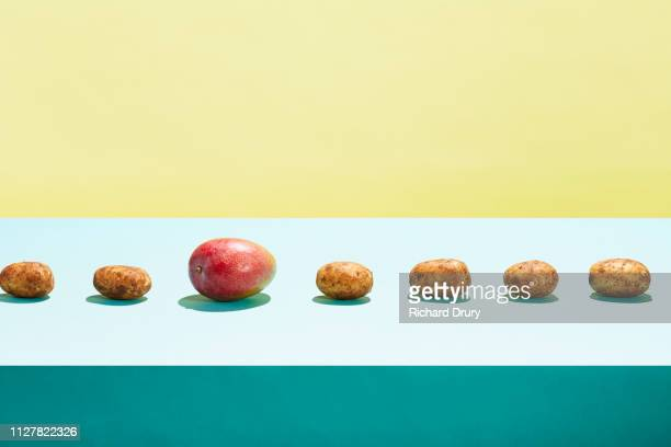 one mango in a row of potatoes - standing out from the crowd stock pictures, royalty-free photos & images