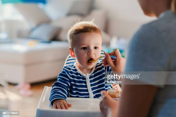one more bite my boy! open wide! - feeding stock pictures, royalty-free photos & images