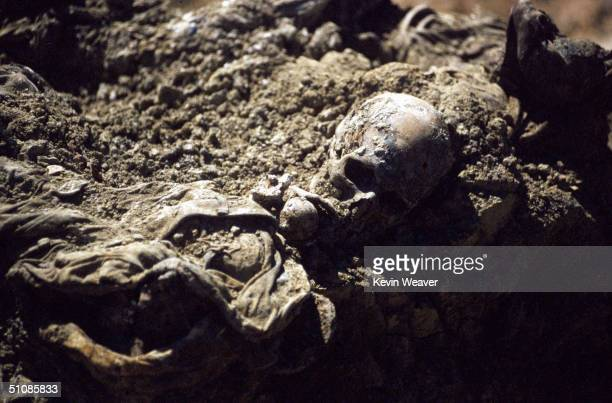 One of around 700 bodies discovered in a mass grave at Crni Vrh in Srpska Republic northeastern Bosnia 2003 The victims are thought to have been...