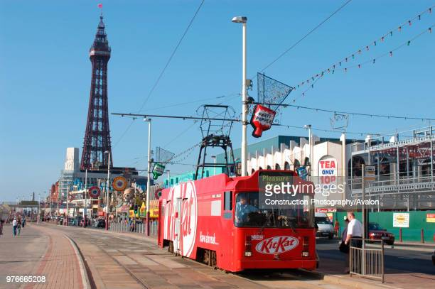 One of Blackpool's famous heritage trams, complete with advertising for a chocolate confectionary, traverses the promenade with Blackpool Tower in...