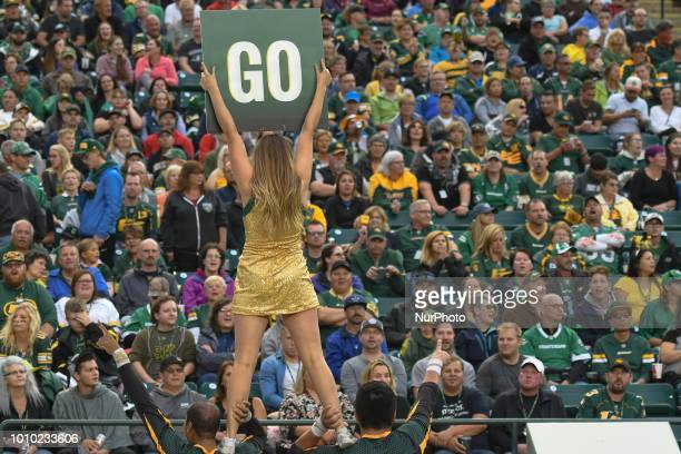 One of Edmonton's cheerleaders seen during CFL game Edmonton Eskimos vs Saskatchewan Roughriders at The Brick Field at Commonwealth Stadium in...