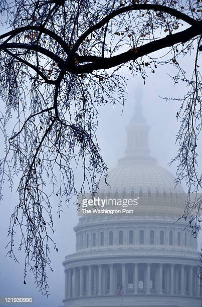 SLUG PH/FAVPLACE CAPTION One of my favorite spots in town for getting pretty pictures is the area just west of the US Capitolaround 3rd street and...