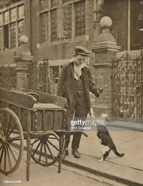 A Customer and the CatsMeat Man' circa 1935 Itinerant streetsellers of pet food were known as 'cat's meat men' They pushed barrows around the London...