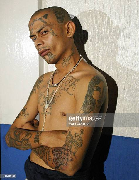"""One of the leaders of the gang known as """"mara salvatrucha"""" shows his tatoos after being arrested by police 24 July, 2003 in a poor neighborhood of..."""