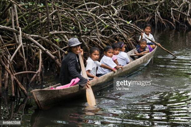 One of the local boats used by the Ngobe Indians as their main form of transport sheltered under a makeshift leanto Channel to entrance at The Ngobe...
