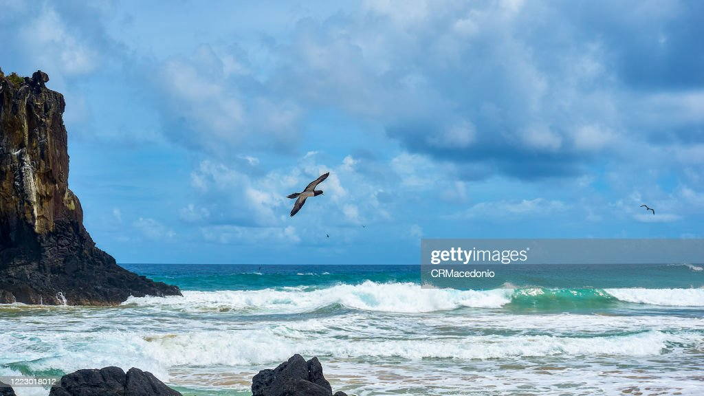 One of the longest beaches in Fernando de Noronha, is a must go in the island, especially for surfers. : Stock Photo