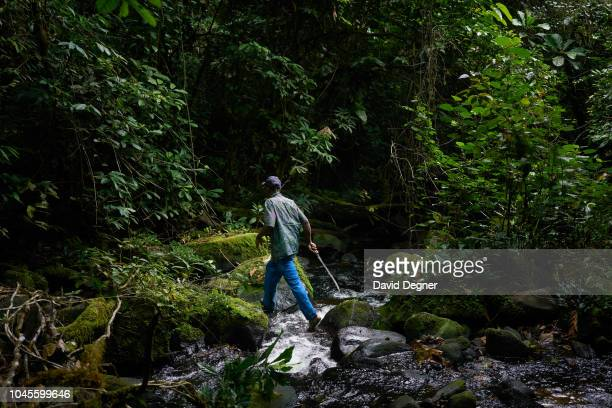 August 18: One of the park guards walks a hunters path through Monte Alan National Park on August 18, 2018 in Monte Alan National Park, Equatorial...