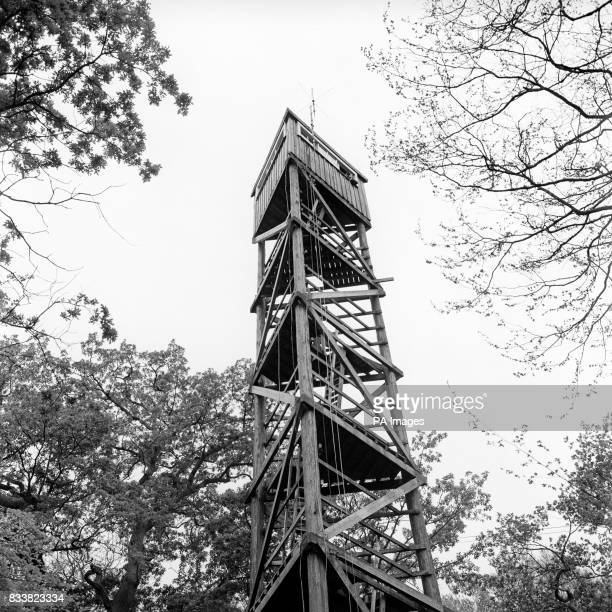 One of the three 78ft high towers which have been erected by the Foresty Commission in the New Forest in order that a round the clock watch can be...