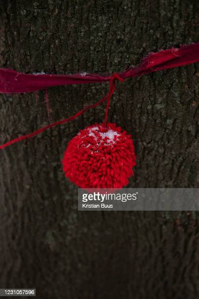 One of the trees designated to be cut down at Highbury Corner tree protection camp on the 8th of February 2021 in London, United Kingdom. Activists...