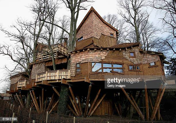 One of the world's largest and most exciting treehouses ever built for the public opened January 12 2005 at Alnwick Garden Trust in Northumberland...