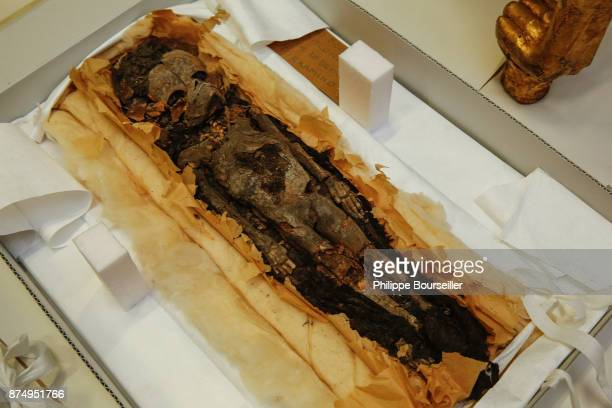 One of two small fetal mummies found in the tomb of Tutankhamun