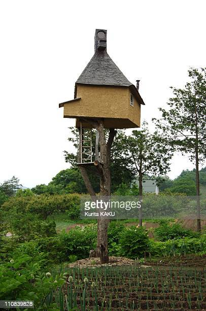 One Of World Famous Architect Terunobu Fujimori 60 Bprm Om Magap Made A Tea House On The Tree In Shino Nagano Japan On June 04 2005 One of world...
