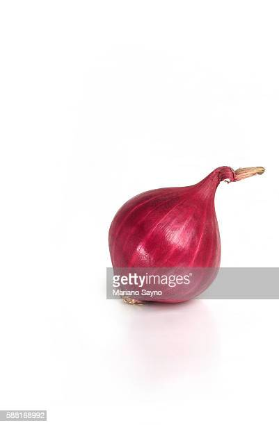 one onion white background, studio shot - cebolla fotografías e imágenes de stock