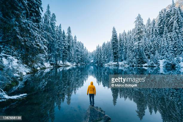 one person admiring a frost forest in the dolomites in winter, italy - mountain stock pictures, royalty-free photos & images