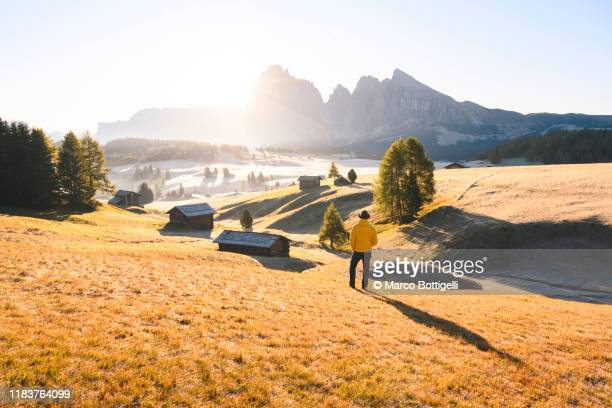 one person admiring the sunrise at seiser alm, italy - wide shot stock pictures, royalty-free photos & images
