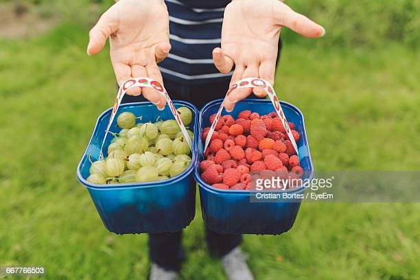 One Person Showing Two Baskets Of Fresh Berries
