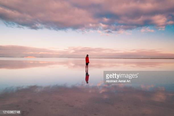 one person standing on the flooded bonneville salt flats, utah, united states of america - realeza fotografías e imágenes de stock