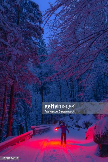one person with a red lamp on a snowy road in the meadle of the forest in winter at twilight. - italia ストックフォトと画像
