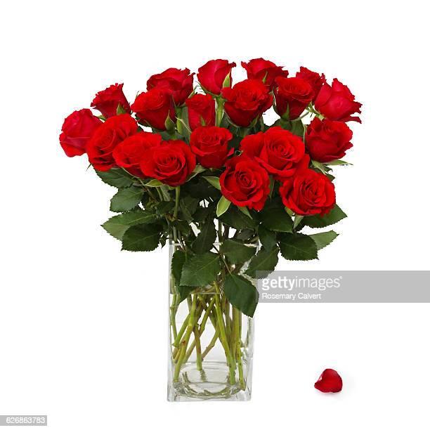 one petal falls from vase of red roses. - rote rosen stock-fotos und bilder
