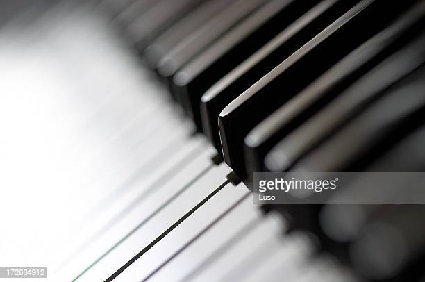 One piano KEY, macro shoot