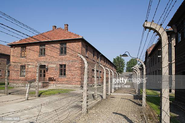 one prison block and double line of electric fencing at auschwitz concentration camp in poland - auschwitz concentration camp stock pictures, royalty-free photos & images
