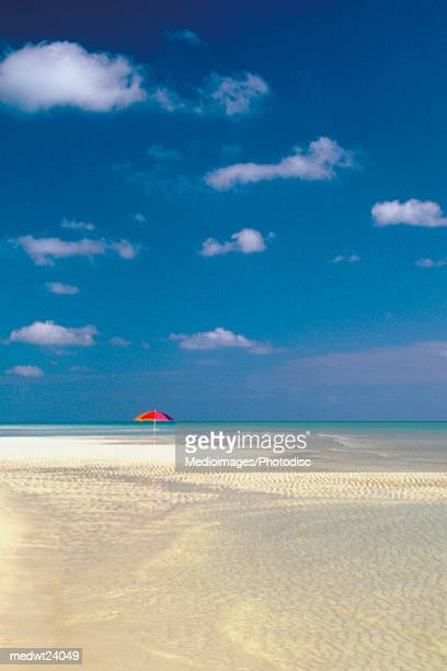 one red umbrella on beach in lucayan national park on grand bahama island, caribbean - lucayan national park stock photos and pictures