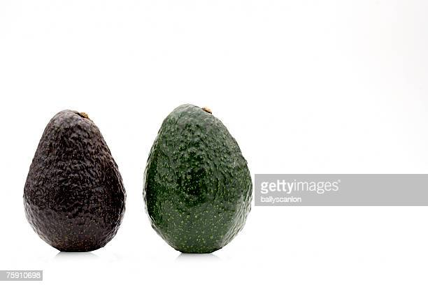 One ripe and one unripe avocado (persea americana) on a white background