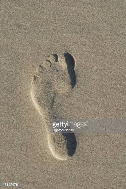 One single footprint in the sand