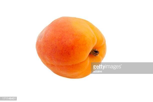 Une seule idéal à maturité abricot isolée sur blanc