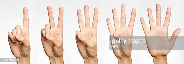 One, Two, Three, Four, Five - Counting with Fingers (XXXL)