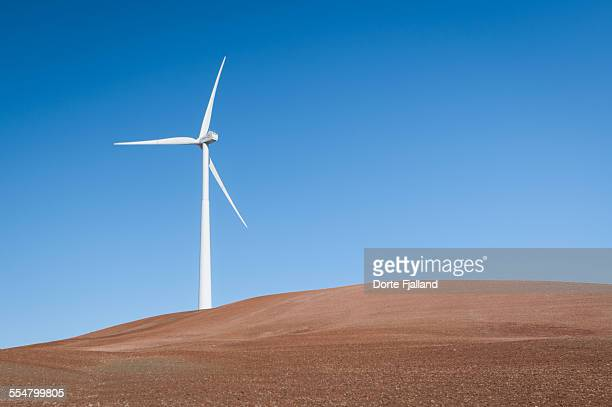 one windmill - dorte fjalland stock pictures, royalty-free photos & images