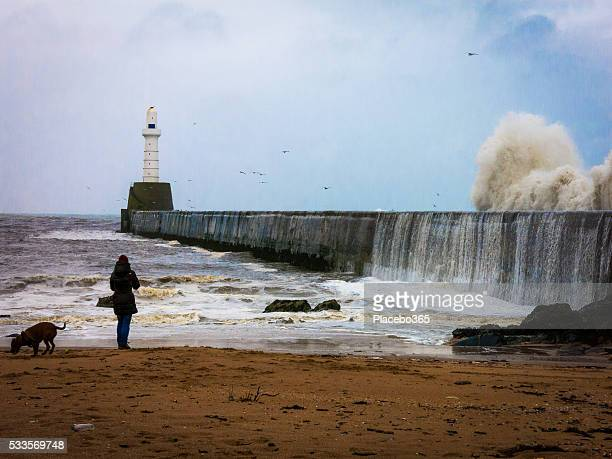 Una donna e cane a Faro inghiottito dal fallimento tempesta onde