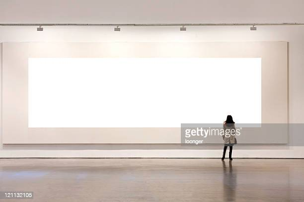 one woman looking at white frame in an art gallery - konstmuseum bildbanksfoton och bilder
