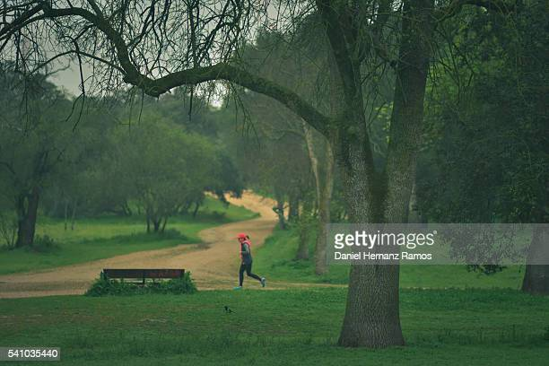 one woman running in a famous madrid park casa de campo - campo stock pictures, royalty-free photos & images
