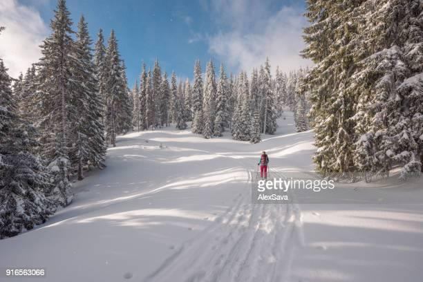One woman ski touring on snow-capped forest trail