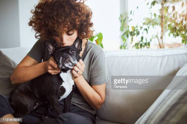 one woman taking good care of her french bulldog. - pet owner stock pictures, royalty-free photos & images