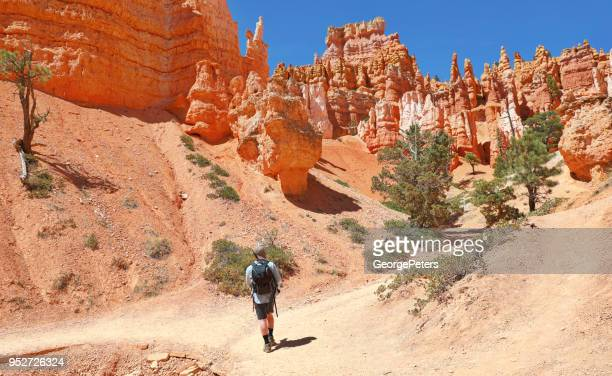 One young man hiking in Bryce Canyon National Park. Queens Garden Trail